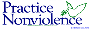 s54_practise_nonviolence_sticker